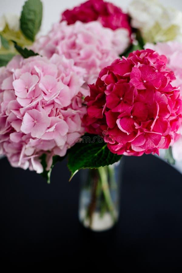 Piękna hortensja w wazie fotografia royalty free