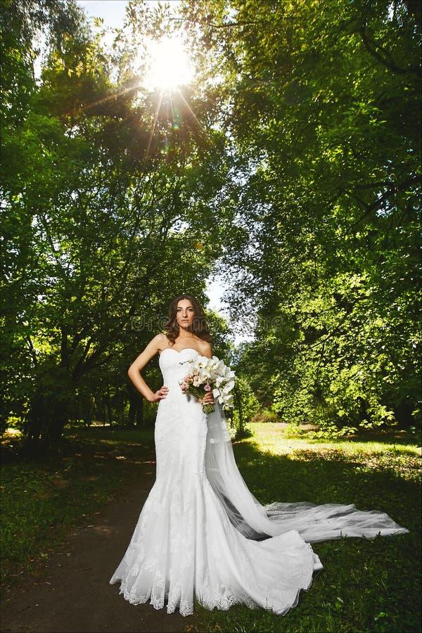 Piękna i modna brunetka modela kobieta z seksownym doskonalić ciałem w białej eleganckiej ślubnej sukni, pozuje z zdjęcie stock