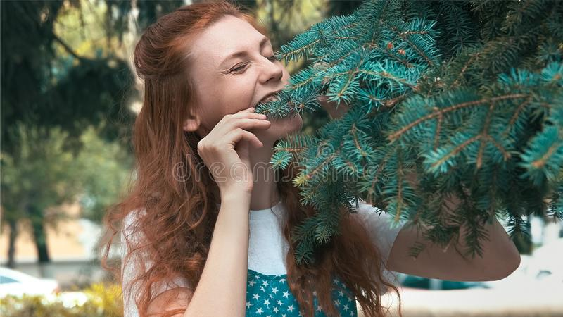 Piękna imbirowa kobieta na diety łasowania sosny igłach obraz royalty free