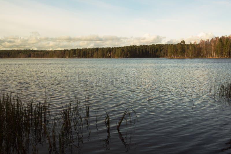 Piękna jesień blisko jeziora obrazy stock