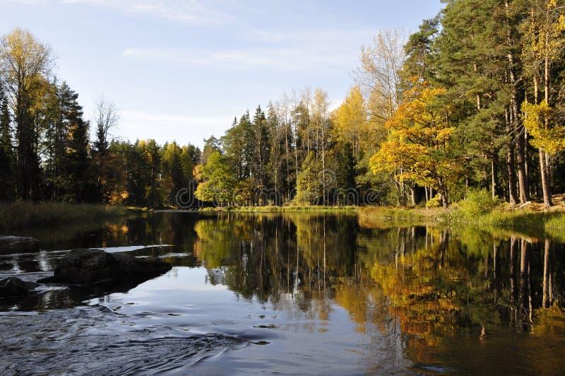 piękna jesień rzeka obrazy royalty free