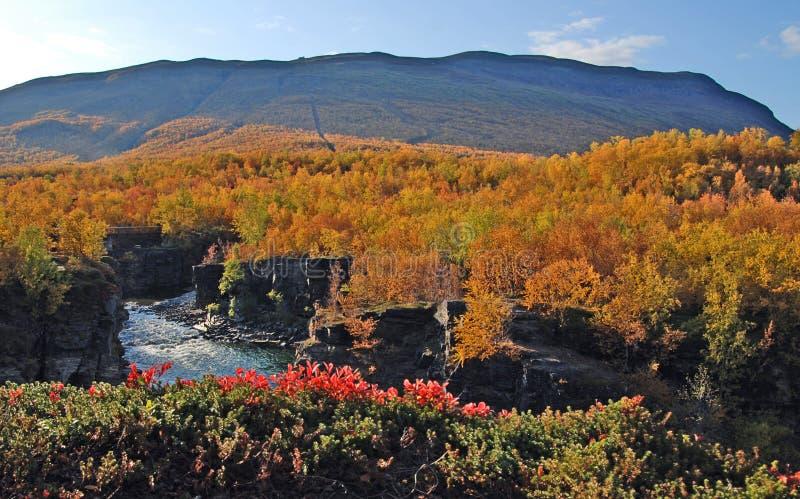 piękna jesień scena zdjęcia stock