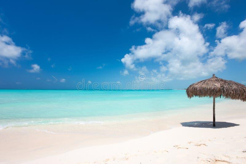 Piękna Karaiby plaża zdjęcia royalty free