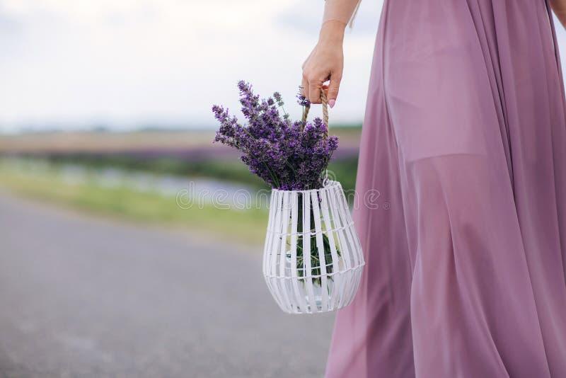 Piękna kobieta trzyma bukiet lawendowy w koszu kwiaty podczas gdy chodzący plenerowego przelotowego pszenicznego pole w lecie obrazy stock
