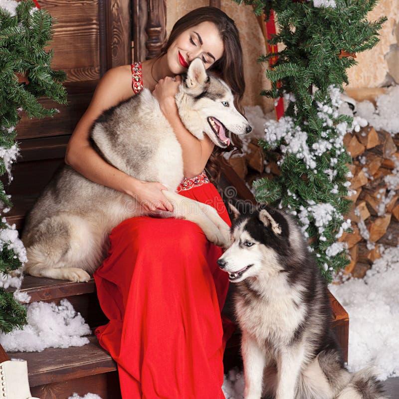 Piękna kobieta w czerwonym wieczór sukni obsiadaniu na krokach z jej psem, husky na tle boże narodzenia dekorowali pokój zdjęcie stock