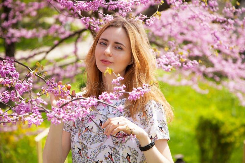 Piękna kobieta w wiosny okwitnięciu obraz stock