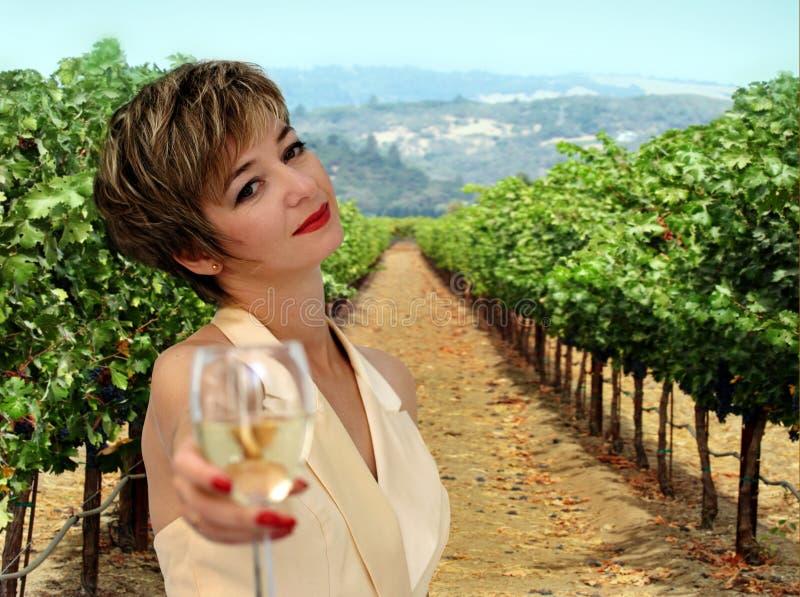 piękna kobieta winnica obrazy stock
