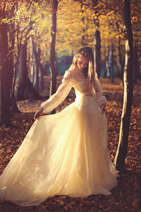 Piękna kobieta z wiktoriański suknią obrazy royalty free