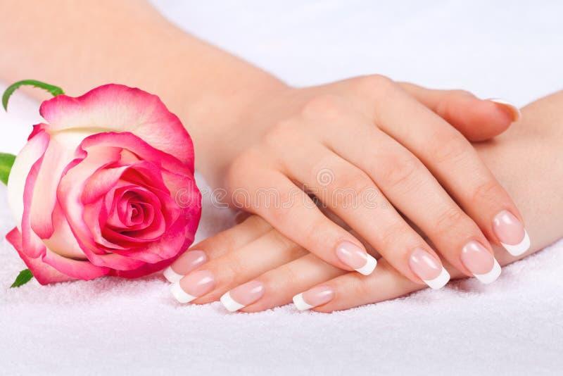 Piękna kobiety ręka z perfect francuskim manicure'em blisko zdjęcie royalty free