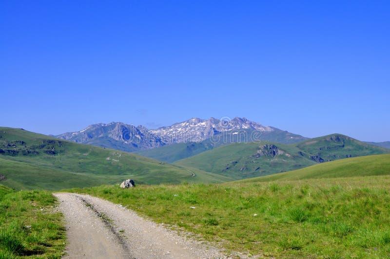 piękna krajobrazowa wiosna zdjęcie royalty free