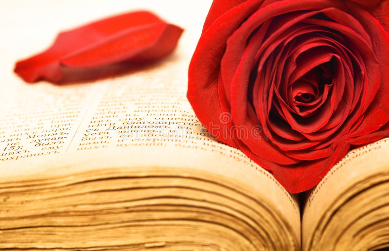 piękna książka wzrastał obrazy royalty free