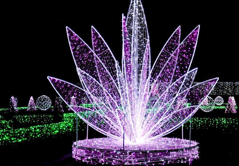 Piękna kwiatu lub fontanny iluminacja obrazy royalty free