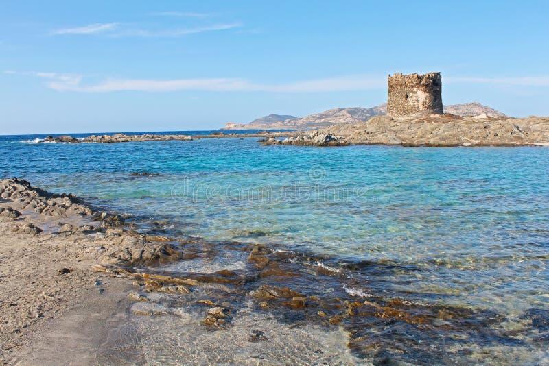 Piękna losu angeles Pelosa plaża w Stintino, Sardinia, Włochy obrazy stock