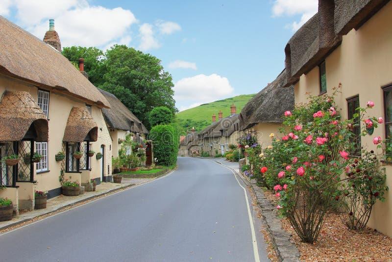 Piękna lulworth wioska z pokrywającym strzechą kwiatu wystrojem i domami obraz stock