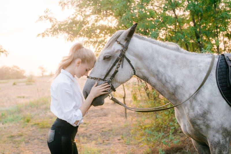 Piękna młoda dziewczyna z lekkim włosy w jednolitej rywalizaci ściska jej konia: outdoors portret na słonecznym dniu na zmierzchu zdjęcia stock