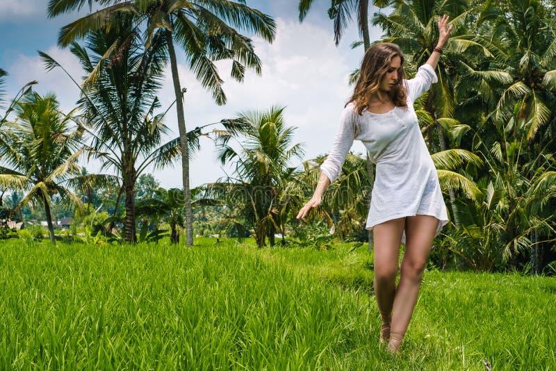 Piękna młoda dziewczyna z seksownym ciałem, długim cienieje nogi i brown włosy w tunice pozuje w tanu i odprowadzeniu na ryżu pol obraz royalty free