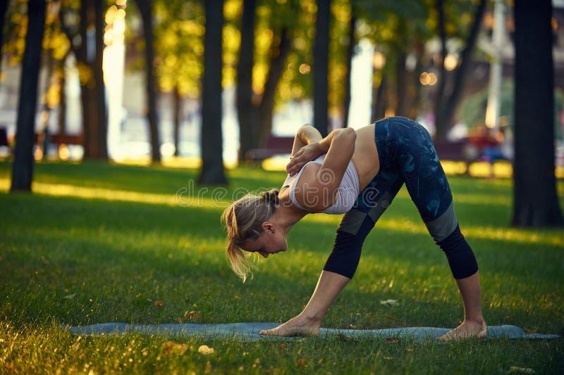 Piękna młoda kobieta ćwiczy joga asana Parsvottanasana - intensywna boczna rozciągliwości poza w parku przy zmierzchem obraz royalty free