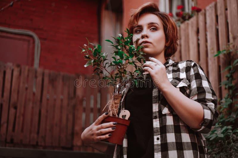 Piękna młoda kobieta trzyma kwiatu w garnku z krótkim czerwonym włosy w szkockiej kraty koszula zdjęcie stock