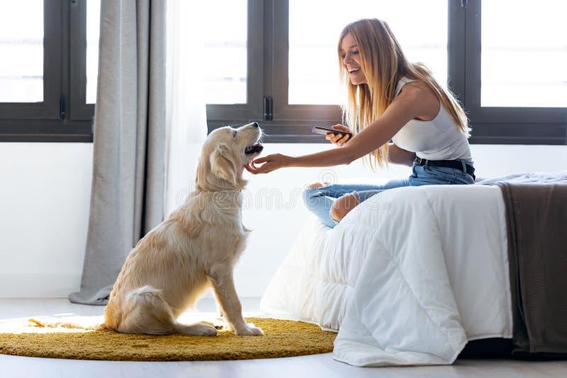 Piękna, młoda kobieta, używająca telefonu komórkowego podczas pobytu u psa w domu zdjęcie royalty free
