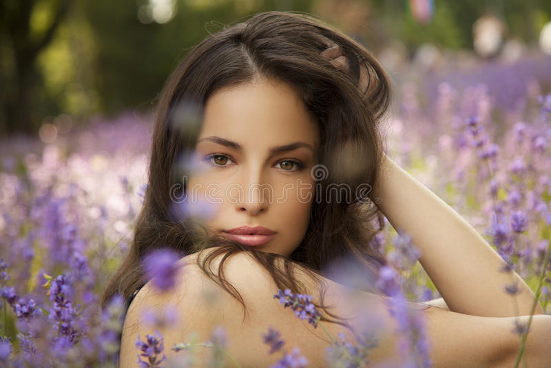 Piękna młoda kobieta w lavander polu obraz stock