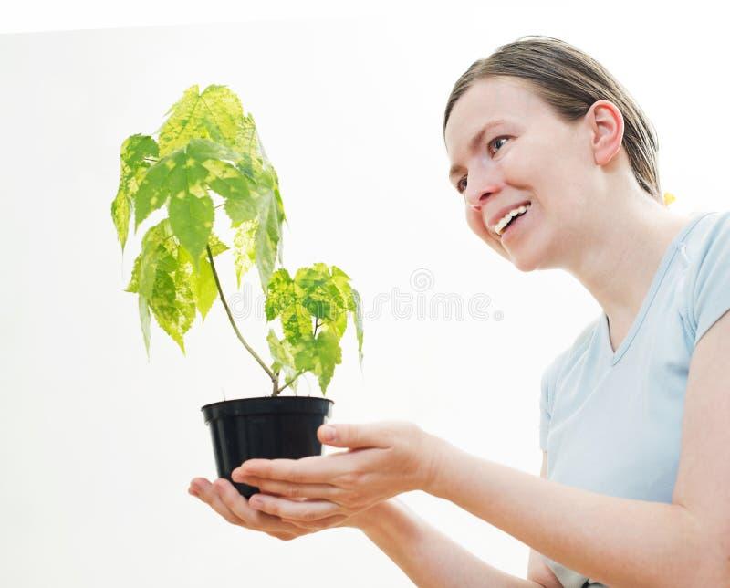 Kobieta z zieleni flancą drzewo obrazy royalty free