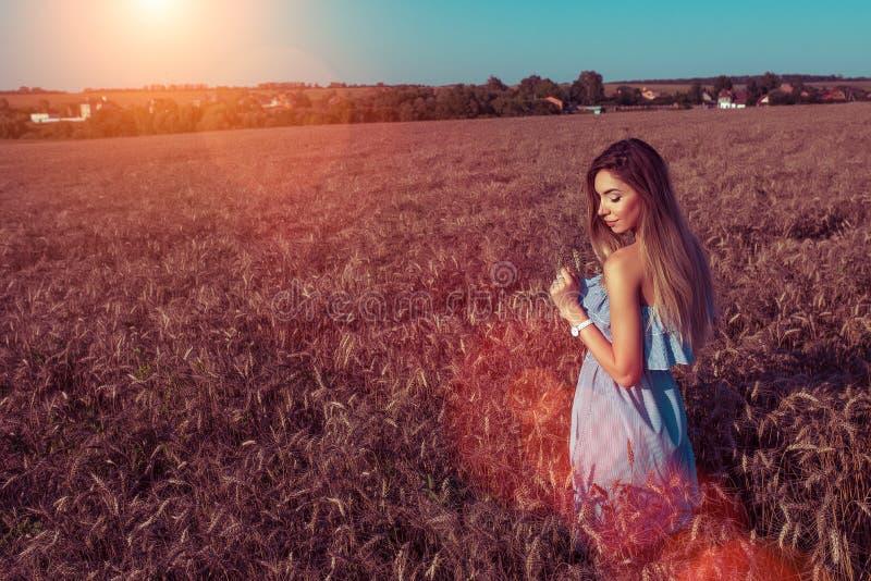 Piękna młoda lato dziewczyna w polu Szczęśliwi ono uśmiecha się sen, sensually i delikatnie fantasizes Uwalnia przestrzeń dla tek obrazy stock