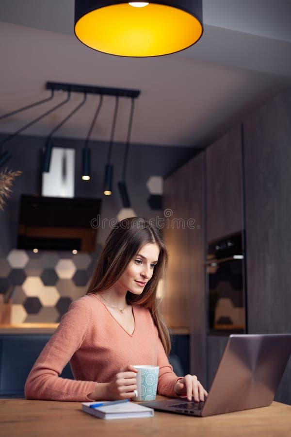 Piękna młoda uśmiechnięta kobieta pracuje od domu zdjęcia royalty free