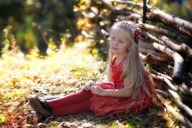 Piękna mała dziewczynka cieszy się naturę na słonecznym dniu Uroczy dziecko bawić się i wycieczkuje w lesie zdjęcia royalty free