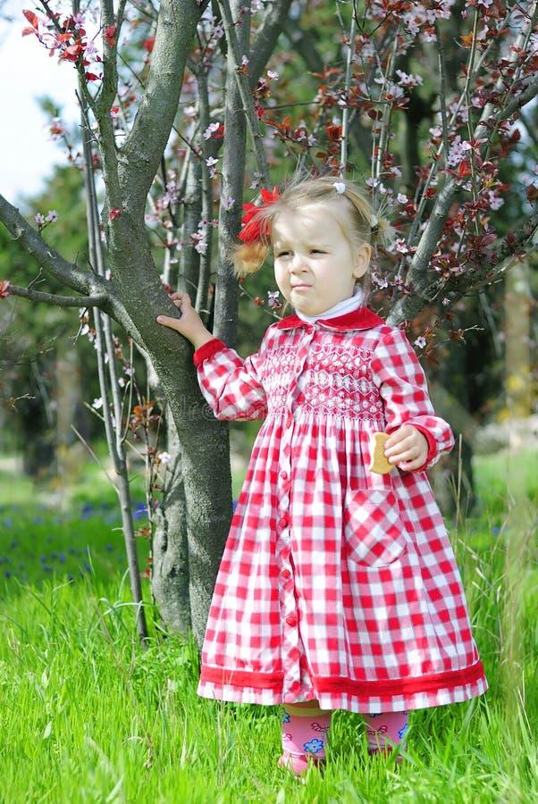 Piękna mała dziewczynka na huśtawce w pięknej czerwieni sukni obraz royalty free