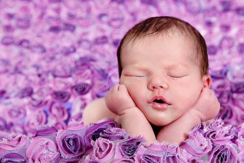 Piękna mała dziewczynka w studiu fotografia stock