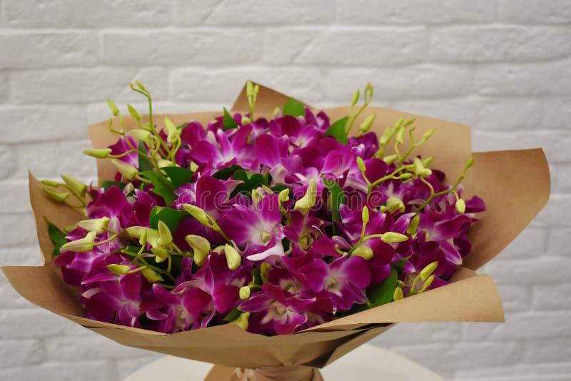 Piękna miłość menchii orchidea w eleganckim florystycznym kocowaniu obrazy stock