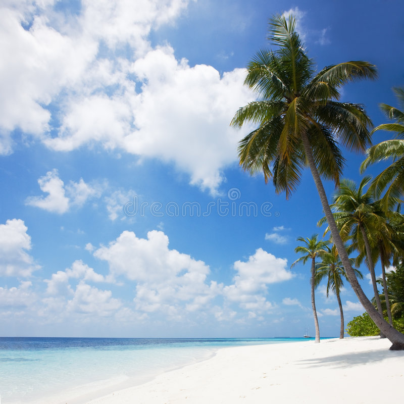 piękna na plaży tropikalny zdjęcia royalty free