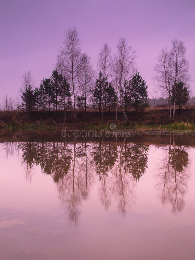 piękna nad ptak chmur kolory muchy złota charakter wcześnie rano zwiększa morza przyjemny cicho odbicie na słońcu zdjęcia stock