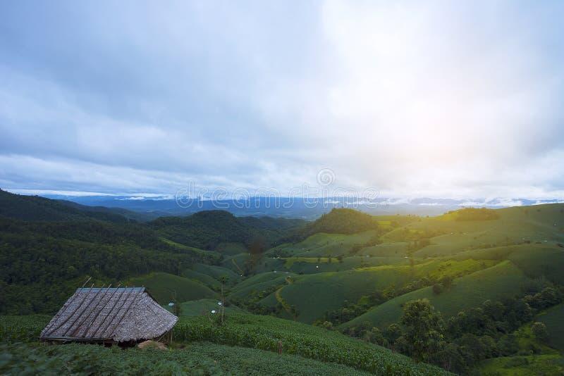 Piękna natura zieleni wzgórza, obszary trawiaści i chałupy, małe budy Ideał dla wakacje wakacje obrazy royalty free