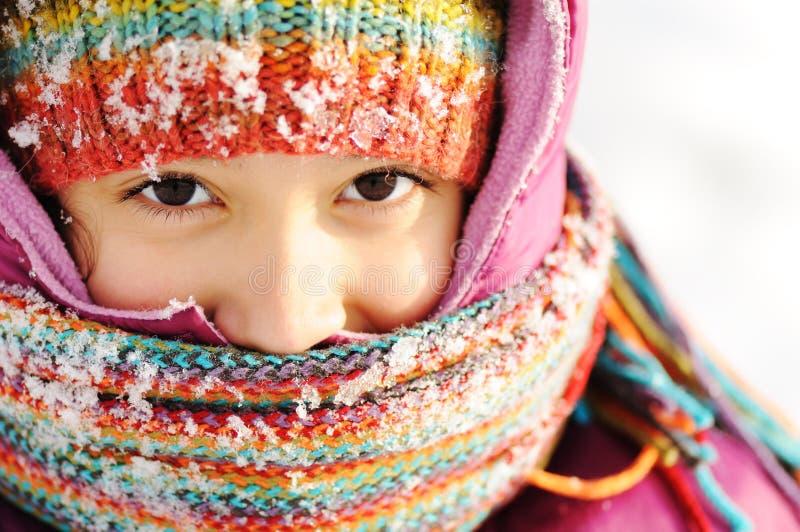 piękna naturalna sceny zima fotografia stock