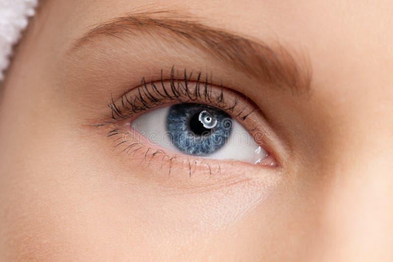 piękna niebieskiego oka dziewczyna uzupełniająca strefa fotografia royalty free