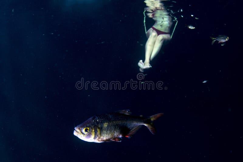 Piękna nogi kobieta podwodna na teeter totter huśtawce obraz stock