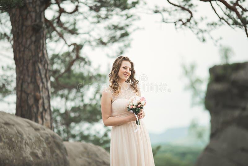 Piękna panna młoda pozuje blisko skał przeciw tłu góry fotografia stock