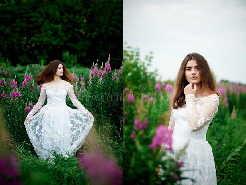 Piękna panna młoda w jaskrawej koronki sukni W polu z herbatą Naturalny piękno, minimalny makeup i luźny włosy, Dziecko fotografia stock