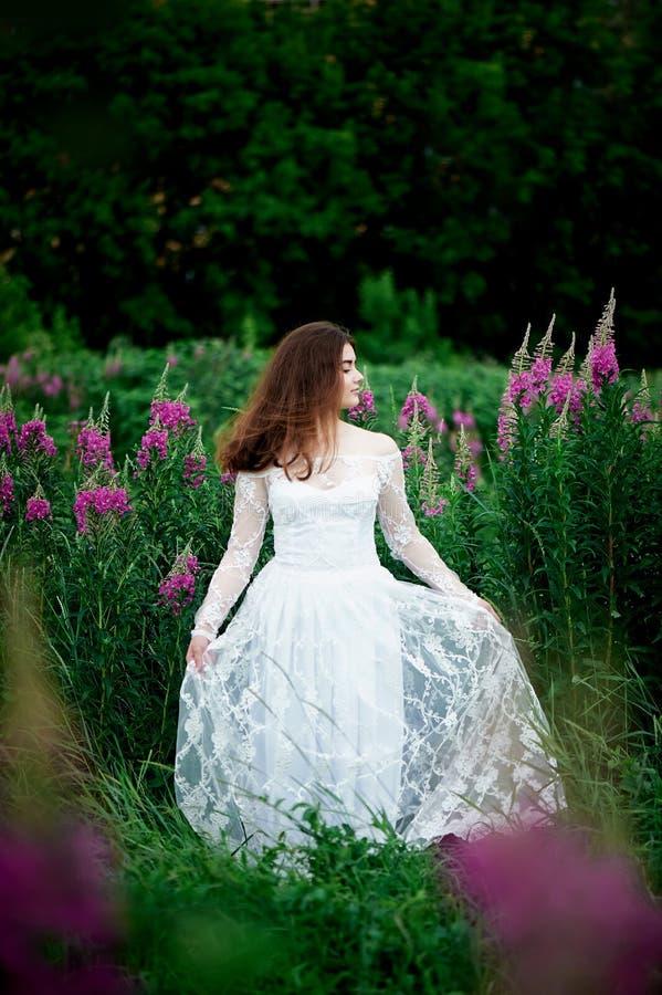 Piękna panna młoda w jaskrawej koronki sukni W polu z herbatą Naturalny piękno, minimalny makeup i luźny włosy, Dziecko zdjęcia stock