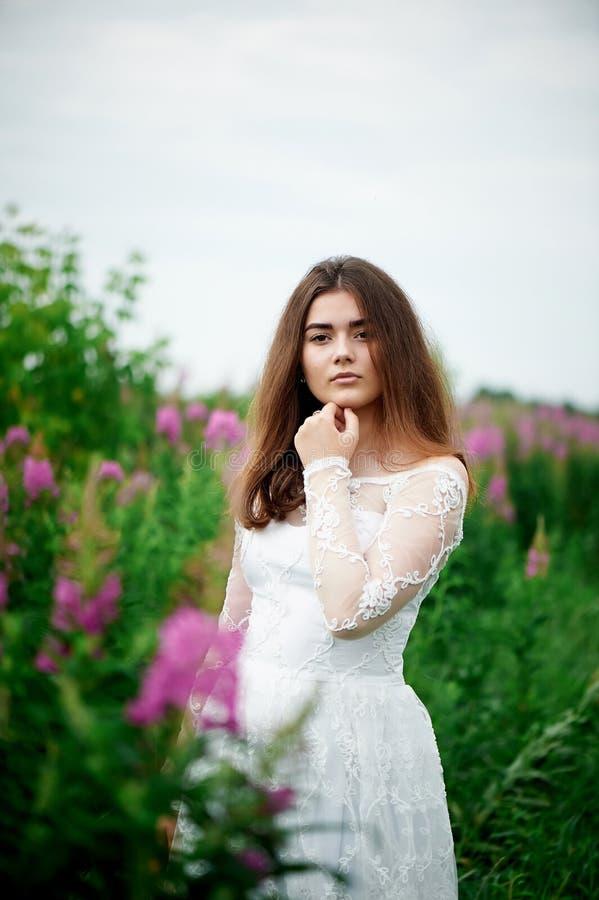 Piękna panna młoda w jaskrawej koronki sukni W polu z herbatą Naturalny piękno, minimalny makeup i luźny włosy, Dziecko zdjęcie royalty free