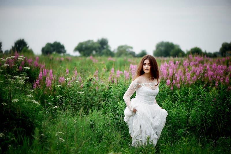 Piękna panna młoda w jaskrawej koronki sukni W polu z herbatą Naturalny piękno, minimalny makeup i luźny włosy, Dziecko zdjęcia royalty free