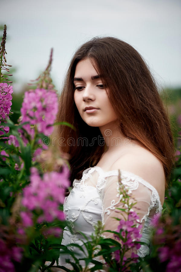 Piękna panna młoda w jaskrawej koronki sukni W polu z herbatą Naturalny piękno, minimalny makeup i luźny włosy, Dziecko obraz stock