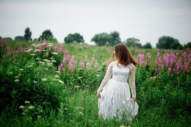 Piękna panna młoda w jaskrawej koronki sukni W polu z herbatą Naturalny piękno, minimalny makeup i luźny włosy, Dziecko obrazy royalty free