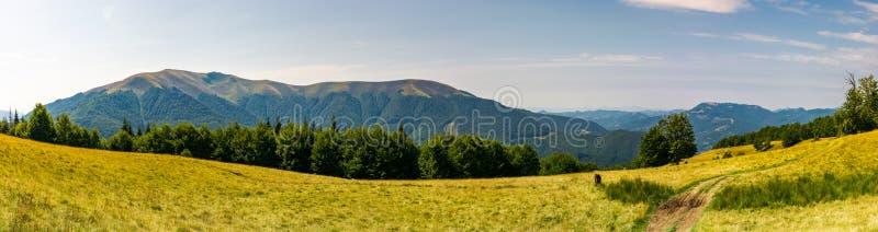 Piękna panorama lato krajobraz w górze zdjęcie stock