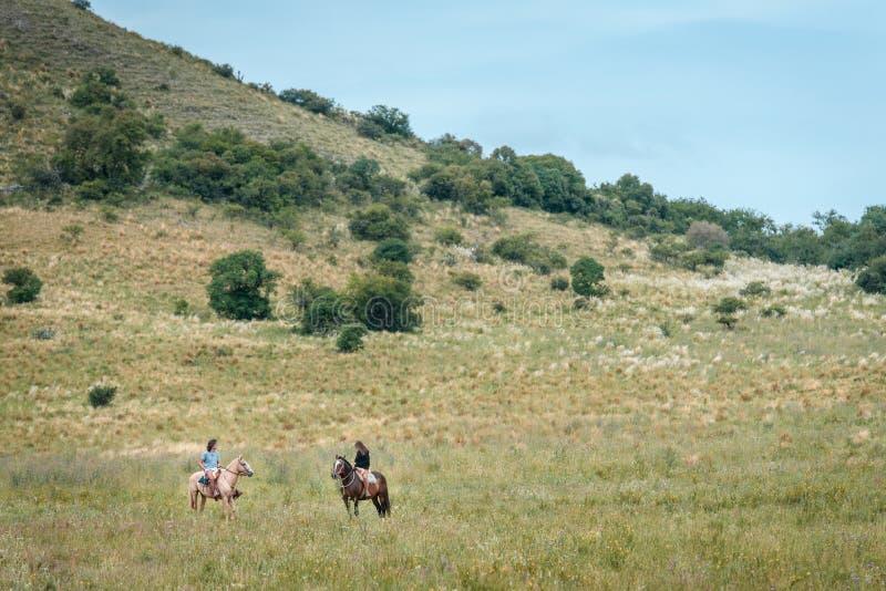 Piękna para jedzie konia zdjęcie stock