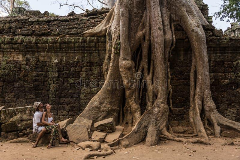 Piękna para patrzeje giganta Zakorzenia przy Angkor Wat Kambodża obraz royalty free