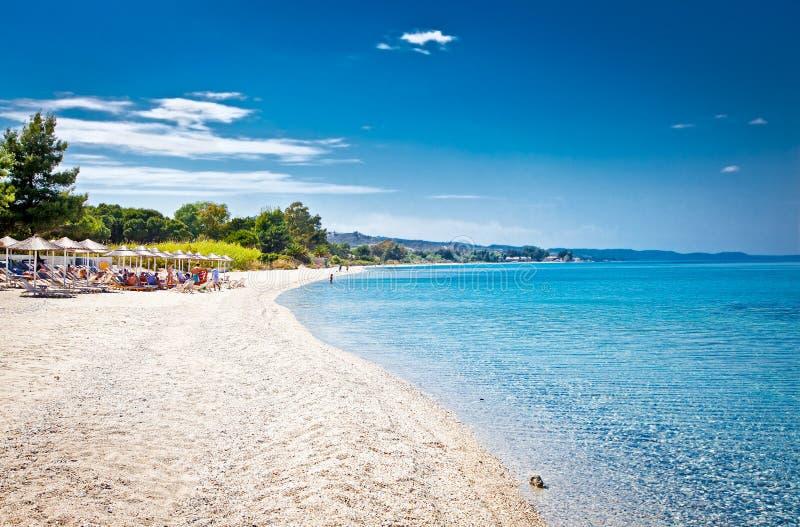 Piękna Paradiso piaska plaża na Kassandra, Grecja zdjęcia stock