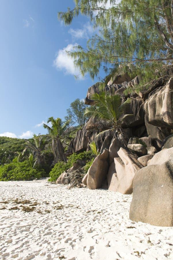 Download Piękna piaskowata plaża obraz stock. Obraz złożonej z osoba - 28972303