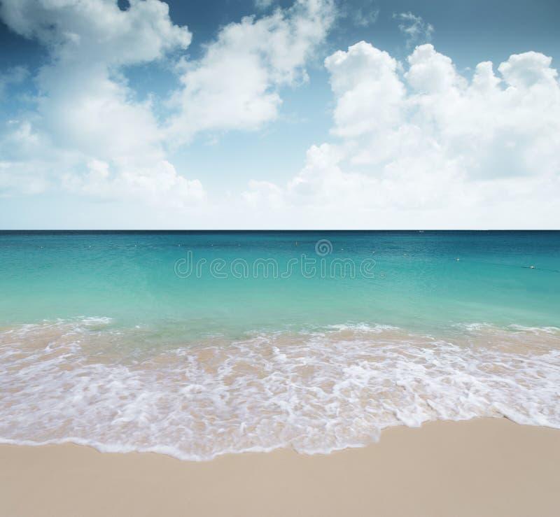 Piękna piaskowata plaża w tropikalnym raju zdjęcie royalty free